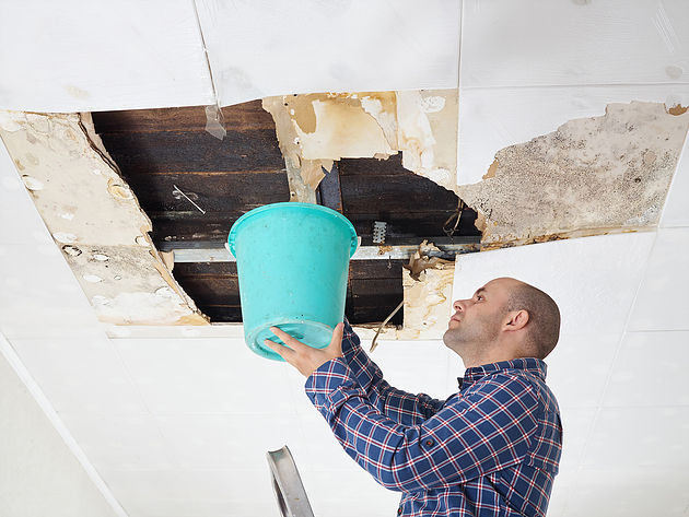 Man Collecting Water In Bucket From Ceiling
