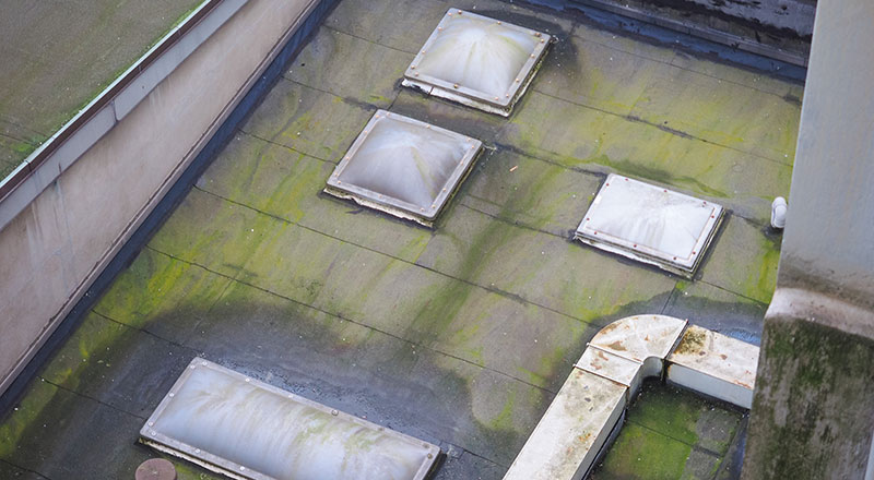Your Roof S Condition May Affect The Property Value