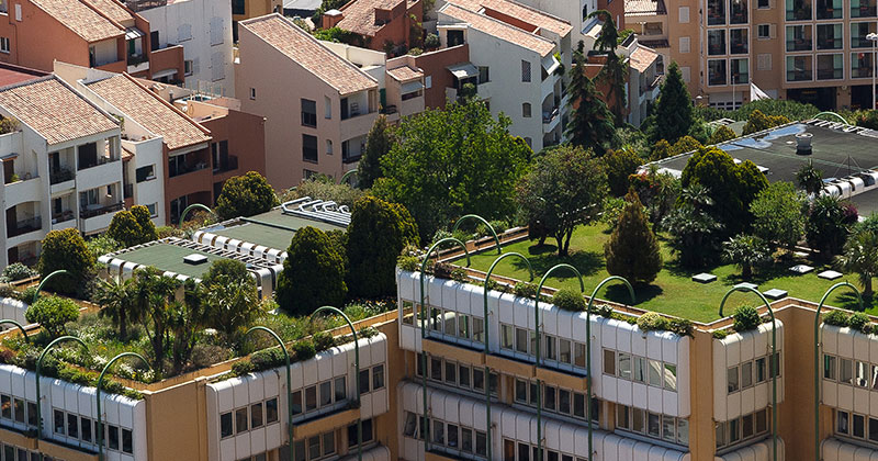 How Do Green Roof Create Value Adco Commercial Roofing