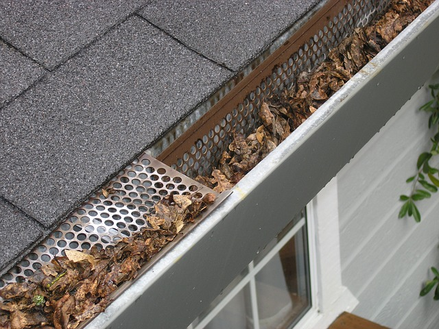 Plan Your Gutter Maintenance