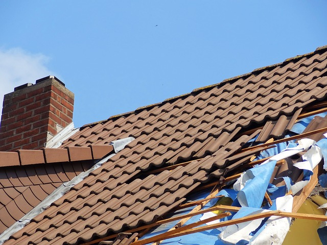 (Adco) How to Spot Roof Damage After Strong Winds