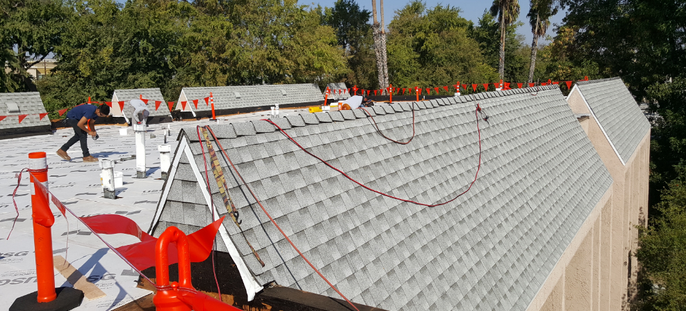 The Best Eco Friendly Options For Your Roof (Adco)