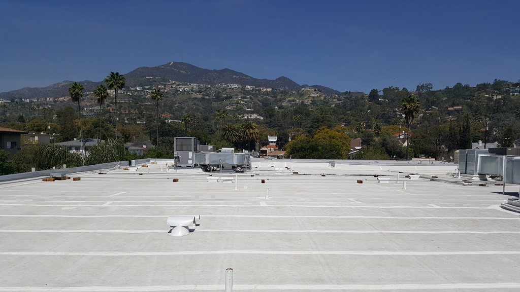 Campbell House HOA roof with a view