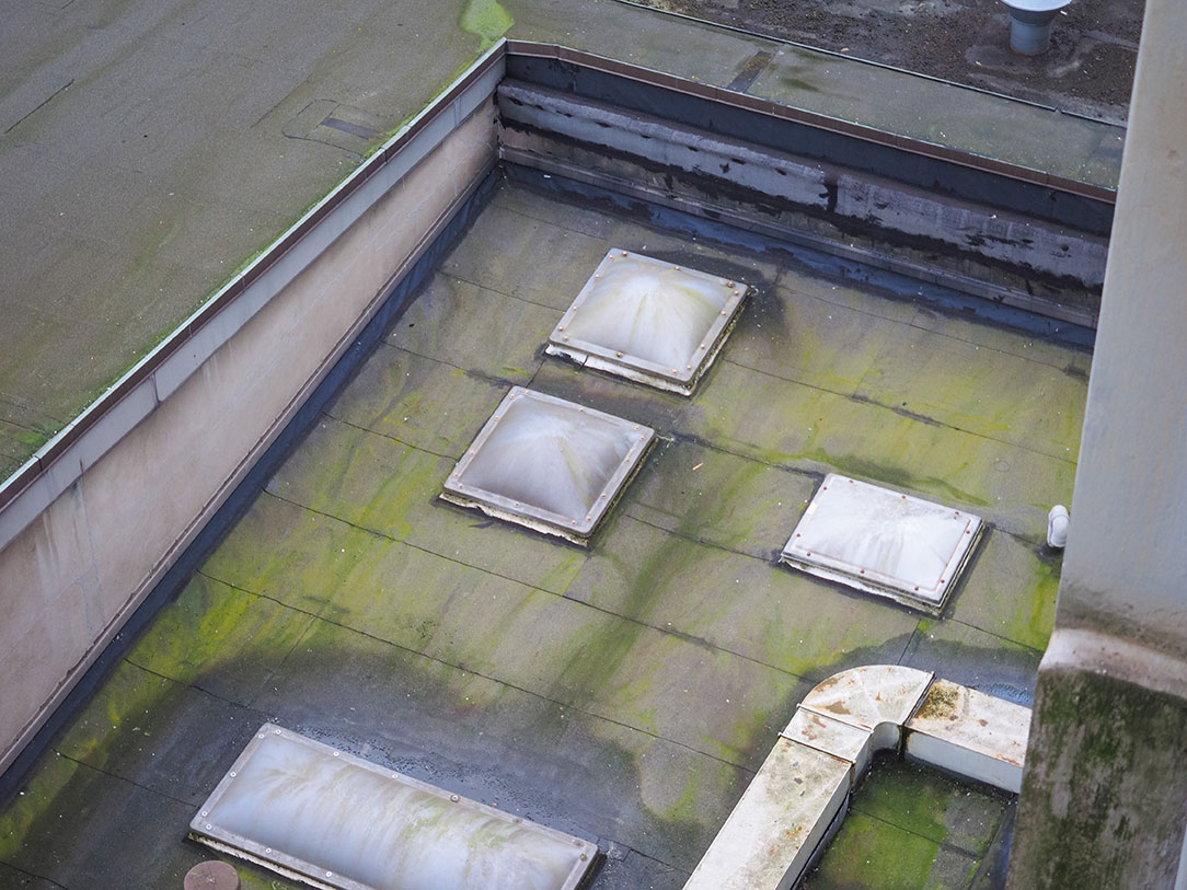 why-is-my-flat-roof-leaking & Why Is My Flat Roof Leaking? - ADCO Roofing - Commercial Roofing