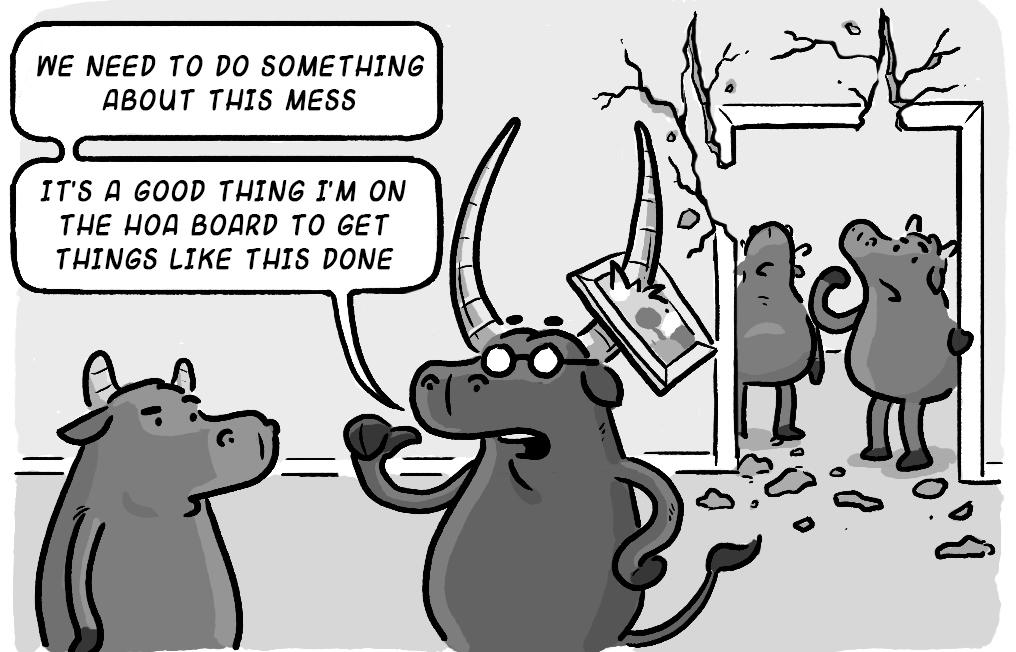 HOA-Board-Run-Own-Projects