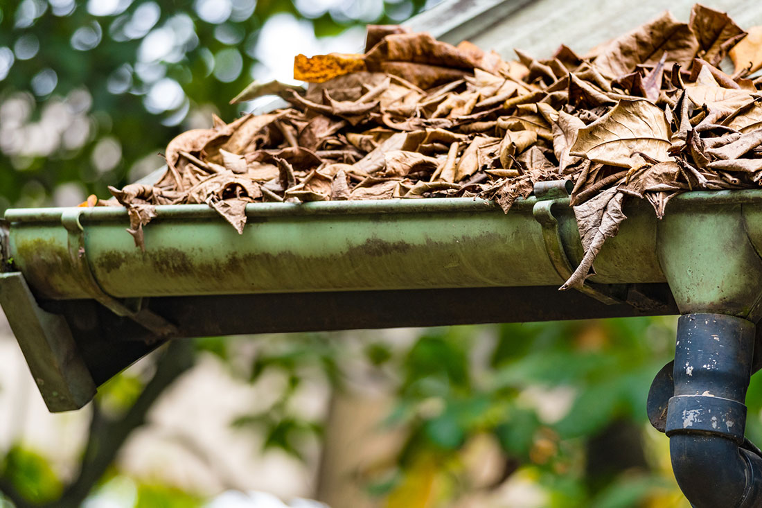 What Happens If You Don't Clean Your Gutters?